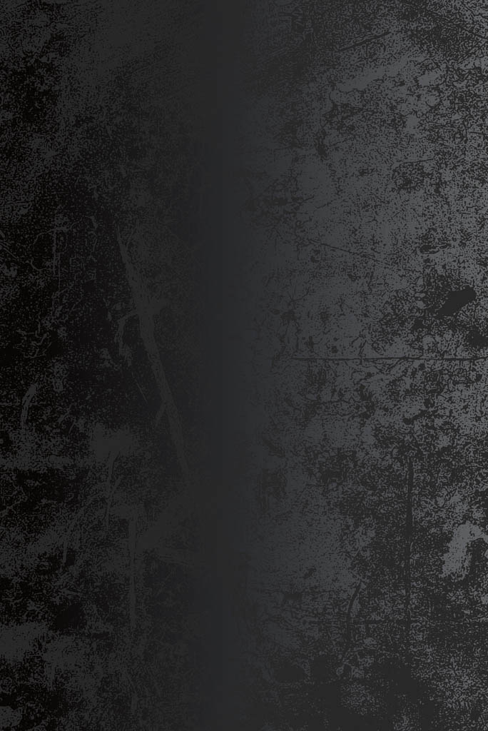 Fassade_metall_dunkel_mobile